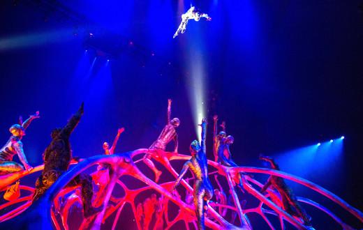 Cirque du Soleil TOTEM Dress Rehearsal