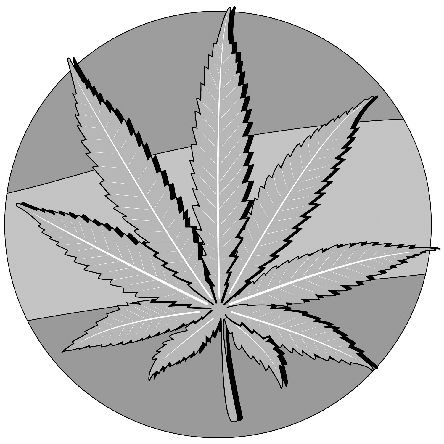 Going Green: On the Recent Legalization of Marijuana
