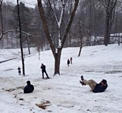 Emory Considers Make-Up Class Options After Snowstorms