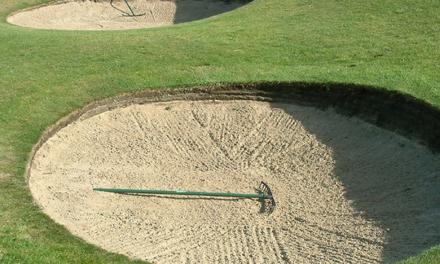 Golf Team Finishes Last at Invitational
