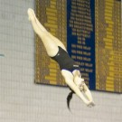Freshman Mara Rosenstock dives into the Woodruff Physical Education Center (WoodPEC) pool. She secured NCAA qualifying scores in the one-meter and three-meter events last Saturday. Photo Courtesy of Emory Athletics.