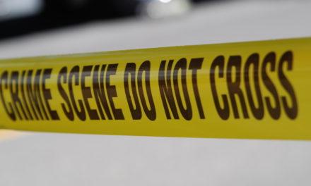 Crime Report | 2.3.15