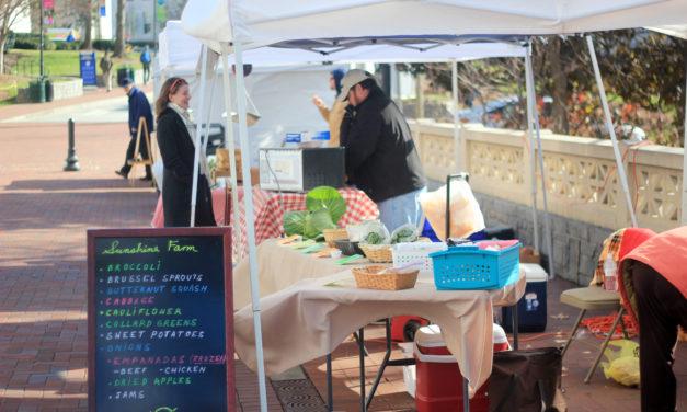 Farmers Market Best Finds