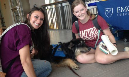 Beowulf Becomes Emory's First Full-Time Therapy Dog