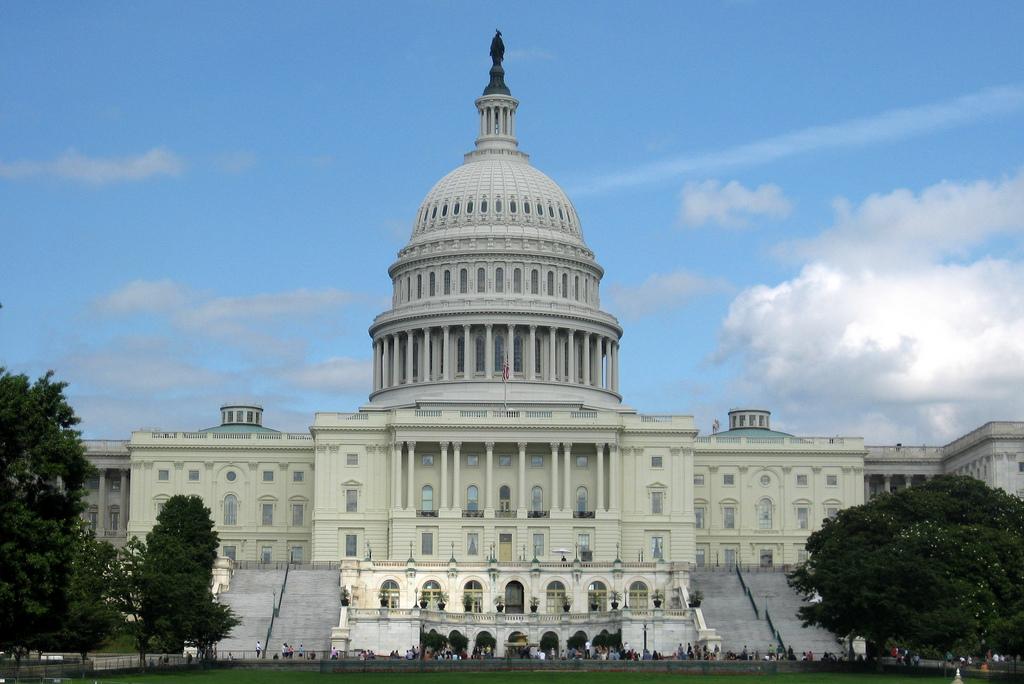 Club Spotlight: Democracy Matters