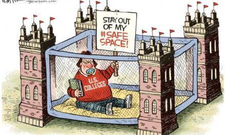 Free Spaces Not Safe Spaces