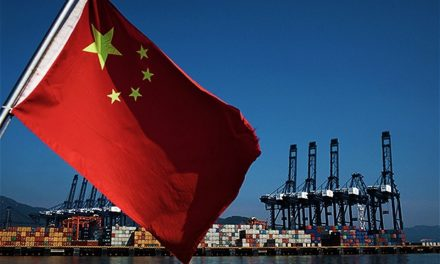 The Curious Case of the Chinese Economy