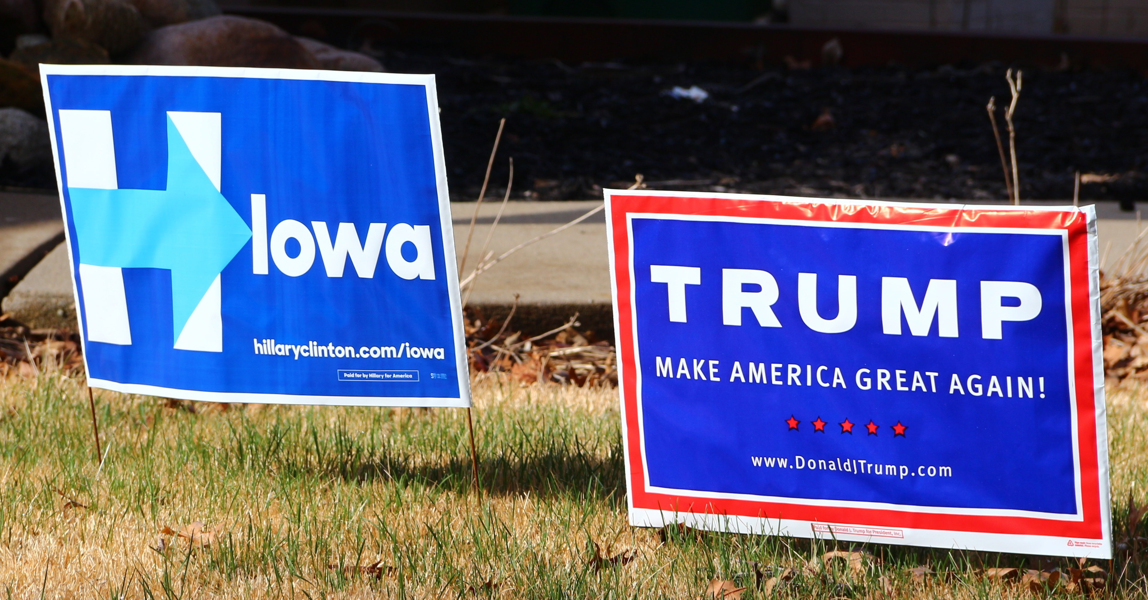 Nobody Likes Our Candidates; Everyone is to Blame