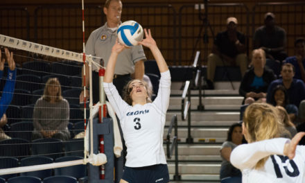 Volleyball Extends Win Streak to Seven Games