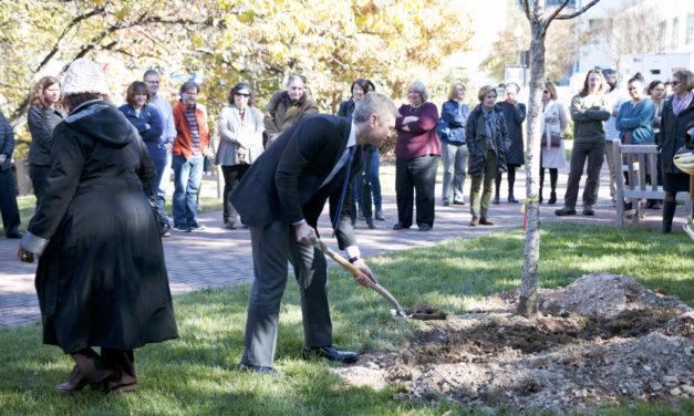 Community Plants Tree in Williams' Memory