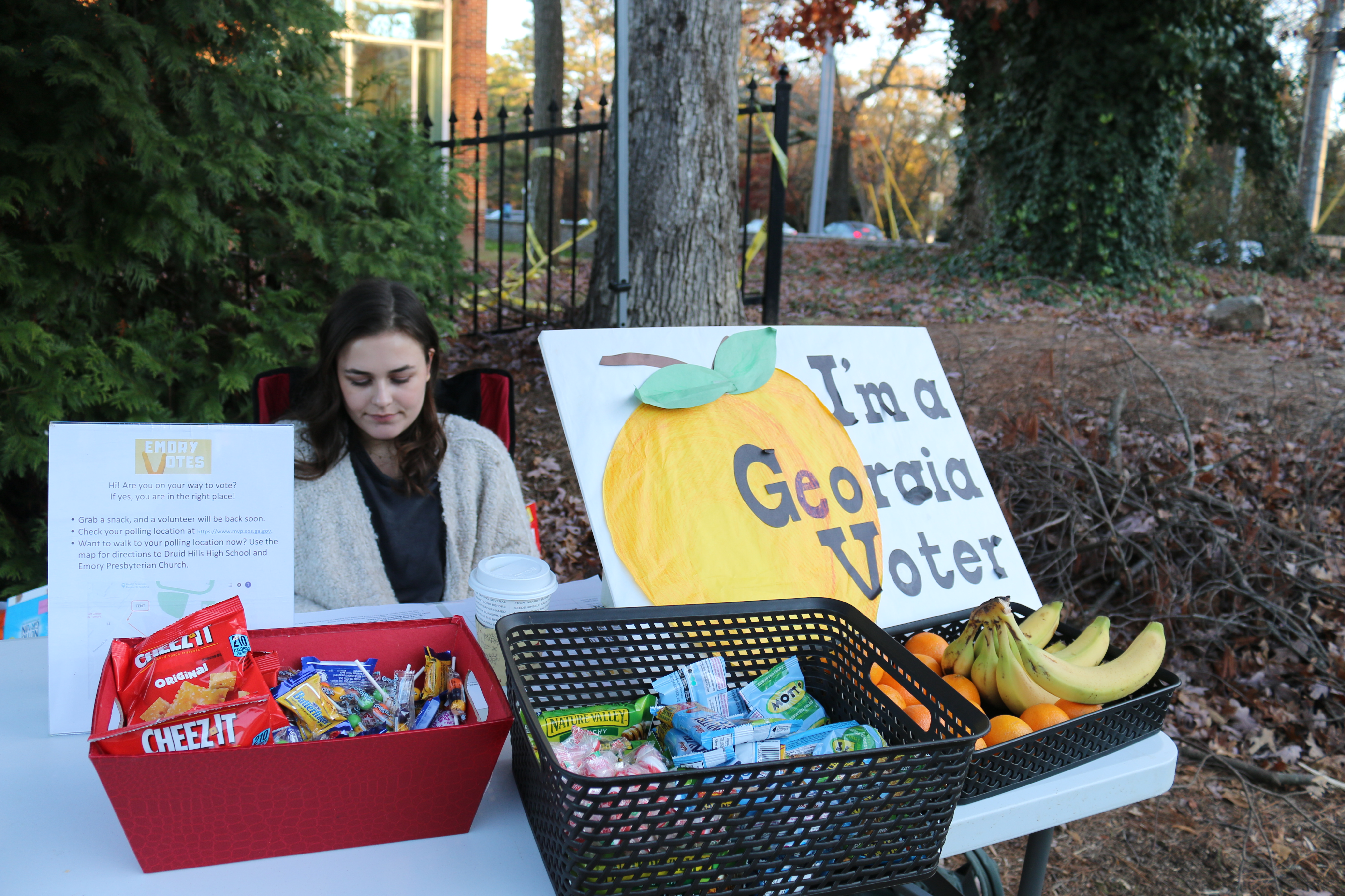 College Council Petitions for University-Wide Election Holiday