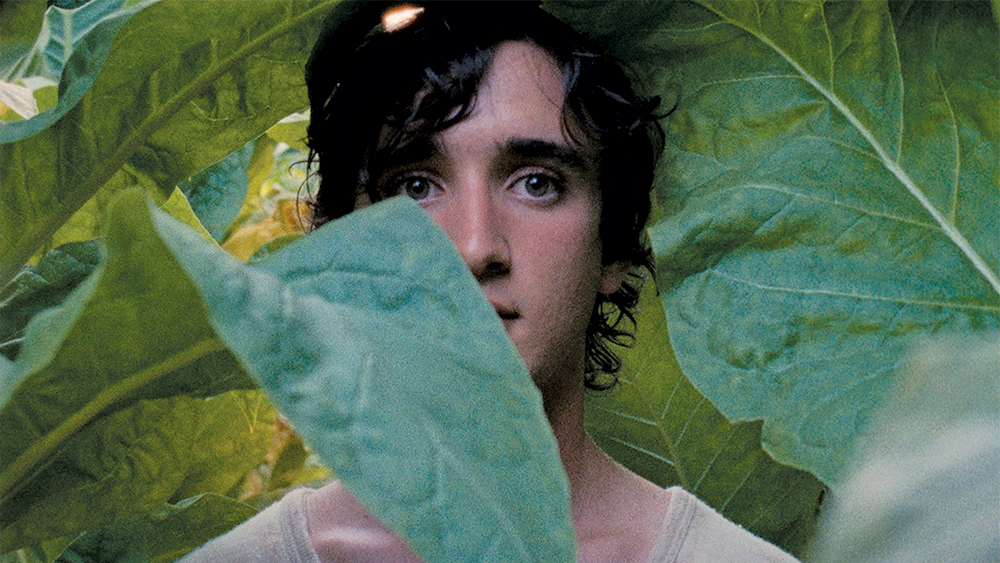 'Happy as Lazzaro' Takes Viewers on Kind-Hearted Journey