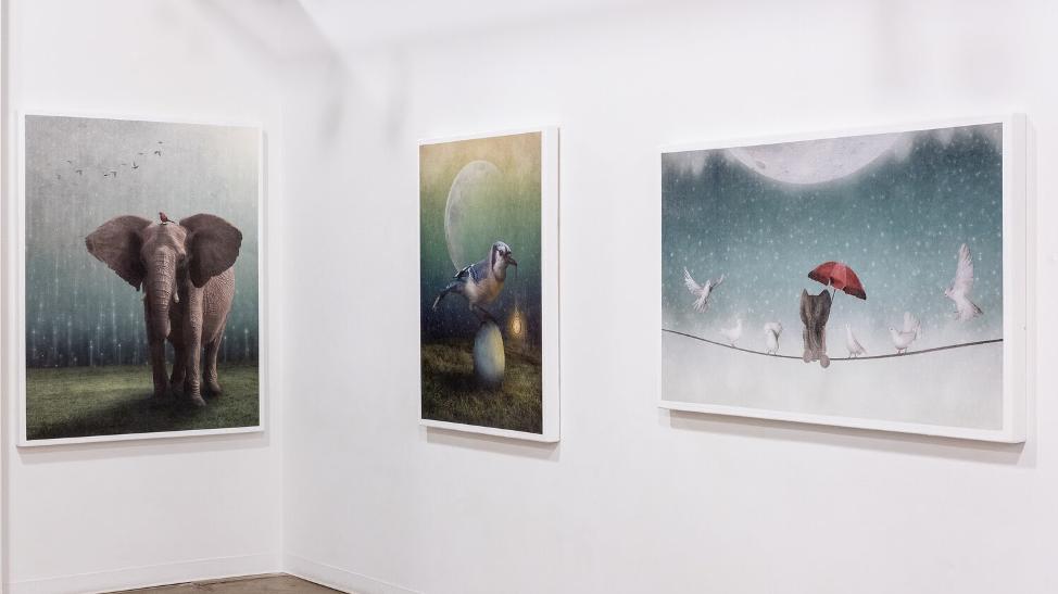 Kai Lin Art Gallery Exhibition Showcases Chaos, Change, Flux