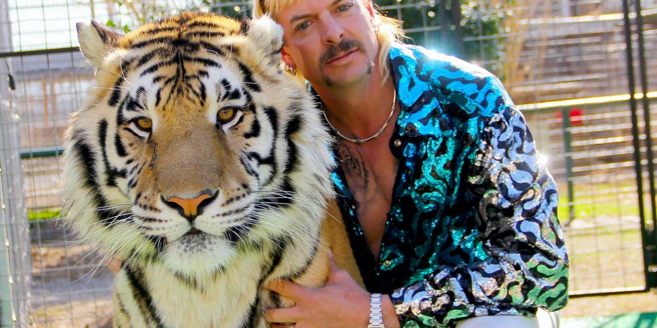 'Tiger King' Reigns Supreme